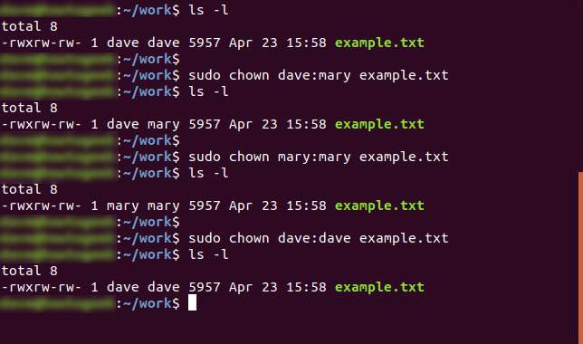 sudo chown dave:mary example.txt