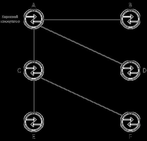 Сеть после Spanning Tree алгоритма