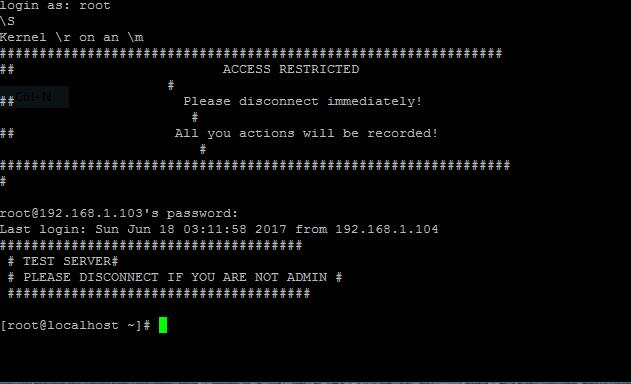 Результат манипуляций – баннер и MOTD при заходе на сервер