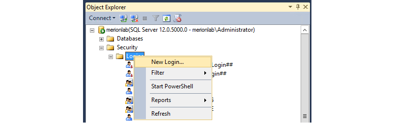 SQL Management Studio Logins