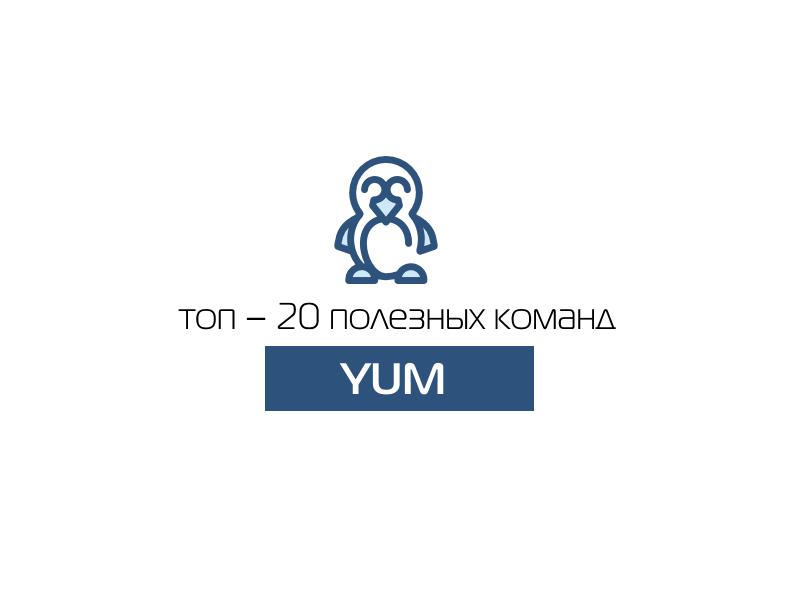 Топ – 20 полезных команд yum